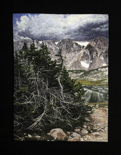 Carol Shinn, 'Krumholtz Spruce', 2019