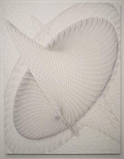 Alyson Shotz, 'Four dimensional String Drawing', 2012