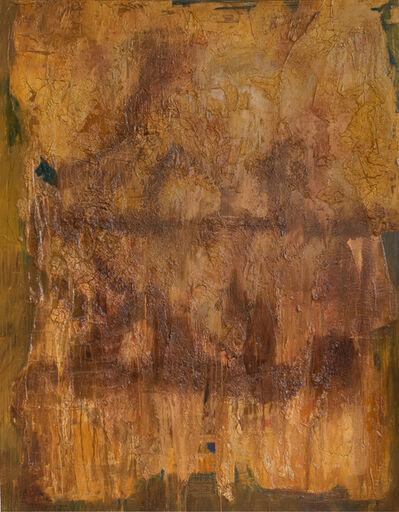 Luis-Fernando Suárez, 'Behind Curtains', 2016