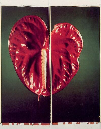Chuck Close, 'Anthurium', 1987