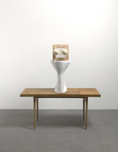 Sarah Lucas, 'Toilet Elevation', 2011