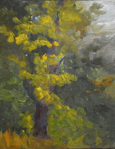 Linda Lynton, 'Summer Sidelines [along the Zena Road riverbank]', 2019