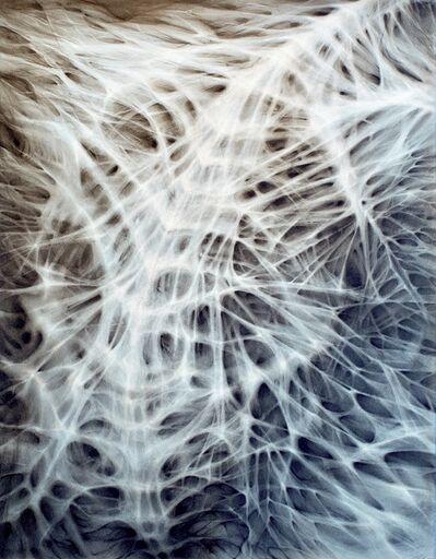 Lorena Salcedo Watson, 'Blue Sinews', 2011