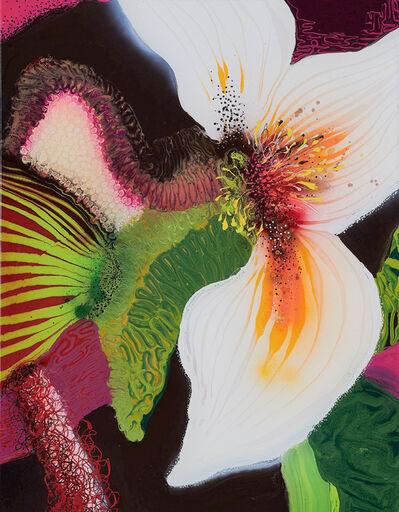 Thierry Feuz, 'Calypso', 2006