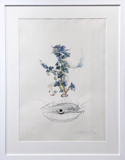 Salvador Dalí, 'Gooseberry Bush', 1969