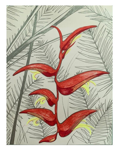 Delilah Ray Miske, 'Hanging Heliconia', 2021