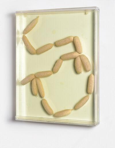 Damien Hirst, '17 Sausages', 1993