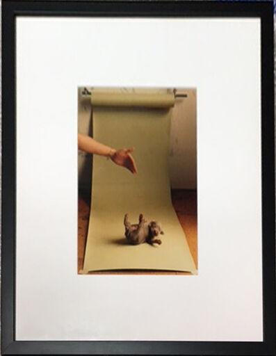 "William Wegman, '""Early Work""', 1989"