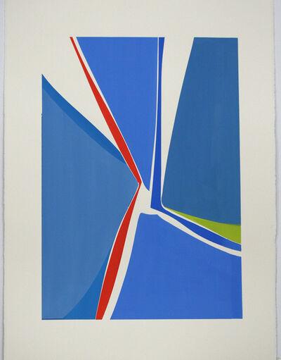 Joanne Freeman, 'Multi X 16', 2020