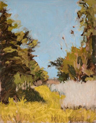 Peter Ligon, 'Tokalon Park Path', 2019