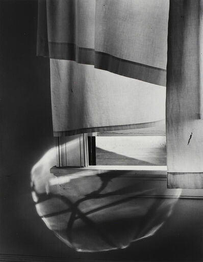 Minor White, 'Windowsill Daydreaming, 1958', 1958