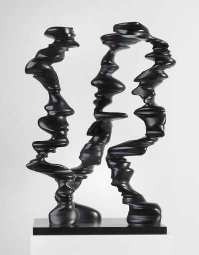 Tony Cragg, 'Points of View', 2009