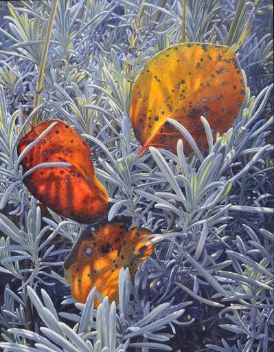 Reinhard Fluri, 'Unser Lavendel', 2005-2018