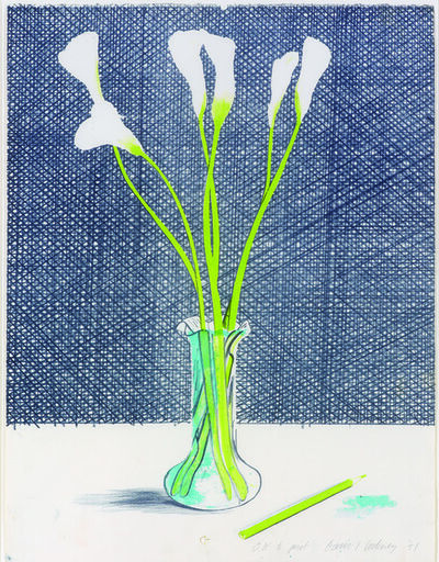 David Hockney, 'Lillies', 1971