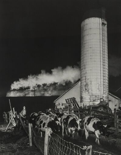 O. Winston Link, 'Bringing in The Cows, Train no. 3 in The Background, Shawsville, VA.', 1955