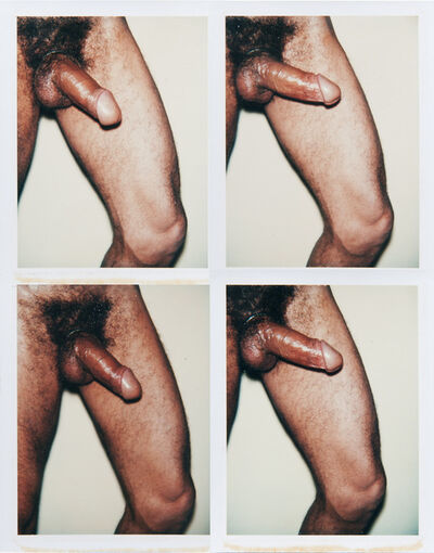 Andy Warhol, 'Andy Warhol, Group of Four Polaroid Photographs from the 'Sex Parts and Torsos' Series, 1977', 1977