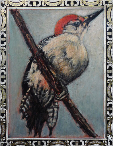 Ed Musante, 'Red Belly Woodpecker / A. Fuente'