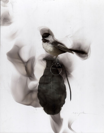 Steven Spazuk, 'Chickadee on a Grenade', 2017