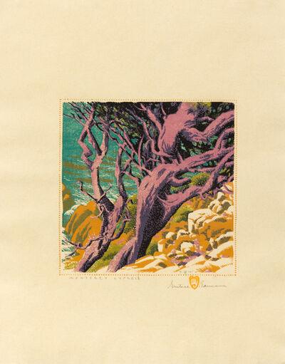 Gustave Baumann, 'Monterey Cypress', 1932-36