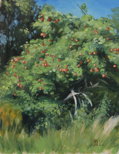 Michael DeVore, 'Apple Tree', 2016