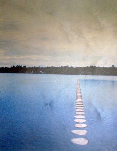 Theodoros Zafeiropoulos, 'Lake Wesserunsett Log II'