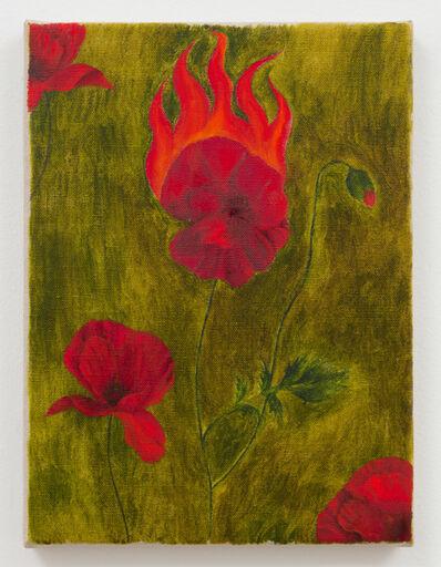 Srijon Chowdhury, 'Poppy on Fire', 2019