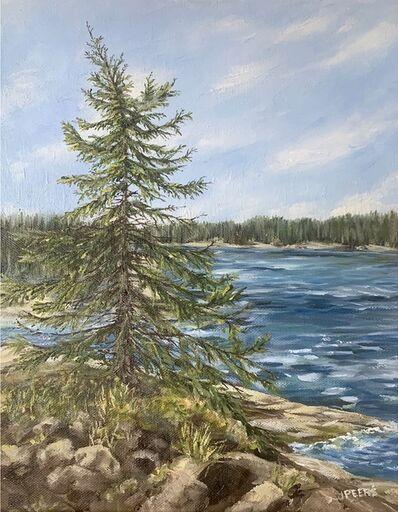 Jennifer Peers, 'Lone Pine', 2020