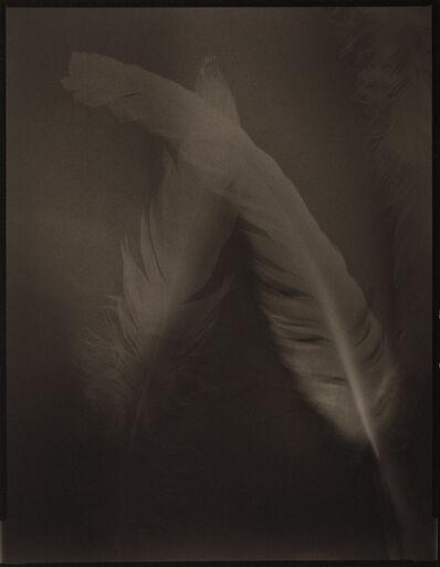 Yumiko Izu, 'Icarus 29', 2016