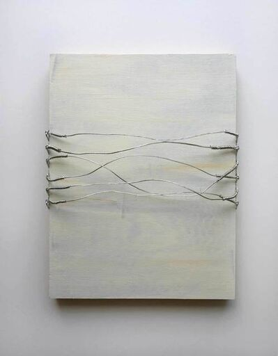 Vlatka Horvat, 'Distrubances (Wire Lines)', 2014