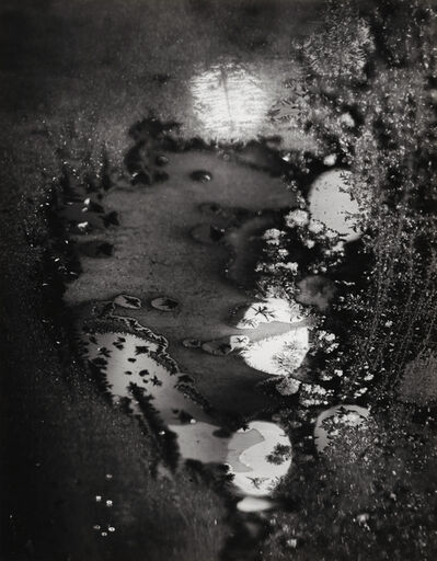 Minor White, 'Beginnings, Frosted Window, Rochester, NY', 1962