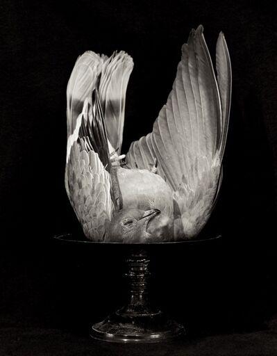 Zoë Zimmerman, 'Peace', 2004