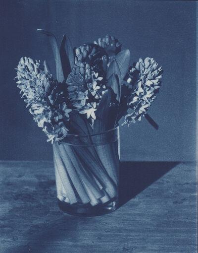 John Dugdale, 'Triple Hyacinths', 1994