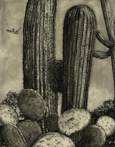Helen Stanley, 'Nest in Saguaro', 2014