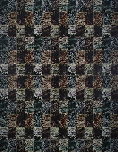 Ken Gonzales-Day, 'Untitled DYSMORPHOLOGIES SERIES (hair magnification in grid) Mounted to Aluminum', 1990-1999
