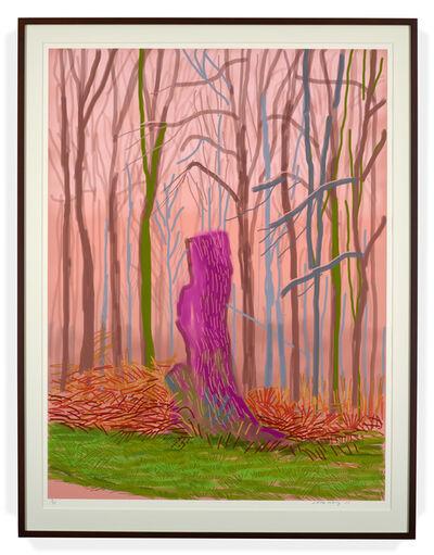 David Hockney, 'The Arrival of Spring in Woldgate, East Yorkshire in 2011 (twenty eleven) 15 March 2011', 2011