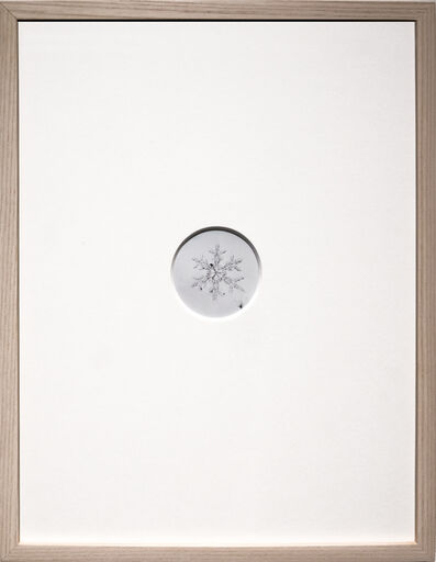 Risaku Suzuki, 'Snow Letter 6', 2006
