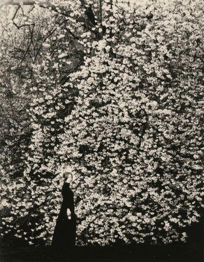 Yamamoto Masao, 'KAWA=FLOW #1641', 2015