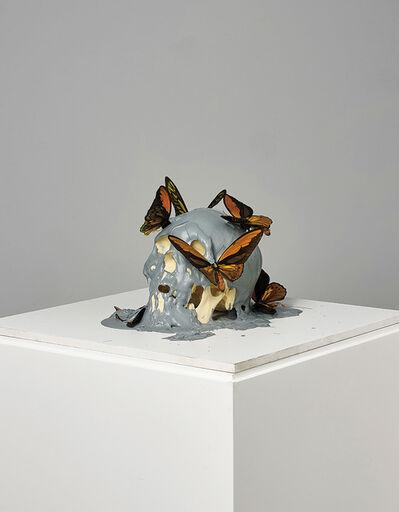 Philippe Pasqua, 'Vanité aux papillons', 2011