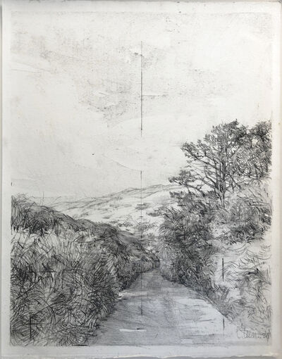 Laurie Steen, 'Drawing 02-21', 2021