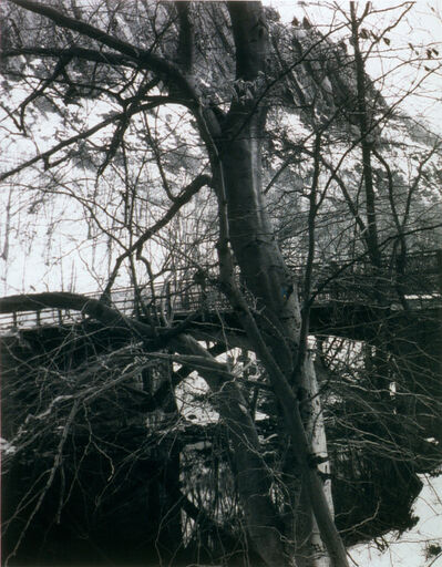 James Welling, 'East Rock, New Haven', 1994