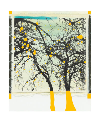 Niesforny, 'Trees with yellow apples', 2019