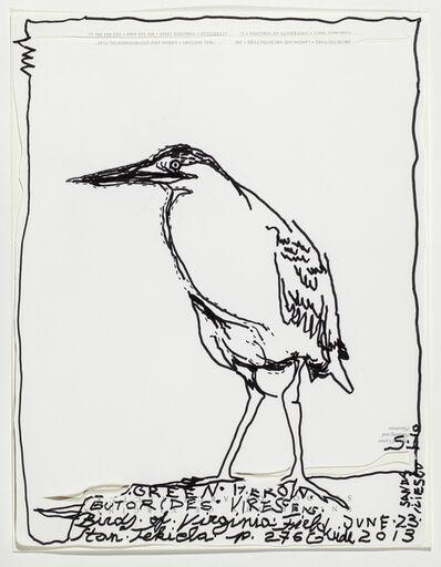 Sanda Iliescu, 'Green Heron, Butorides Virescens', 2013