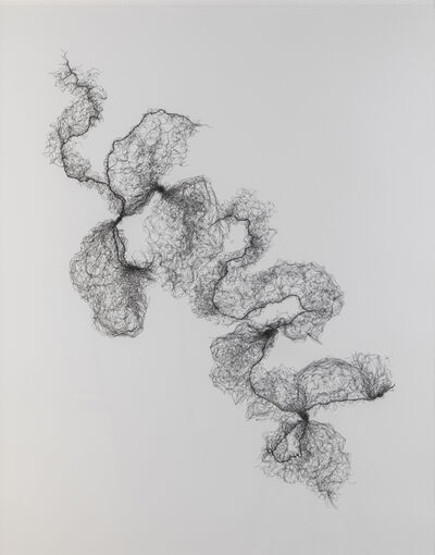 Susie MacMurray, 'Tied Hairnets No.3', 2014