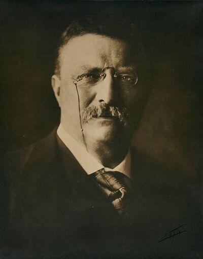 Edward Sheriff Curtis, 'Theodore Roosevelt', 1904