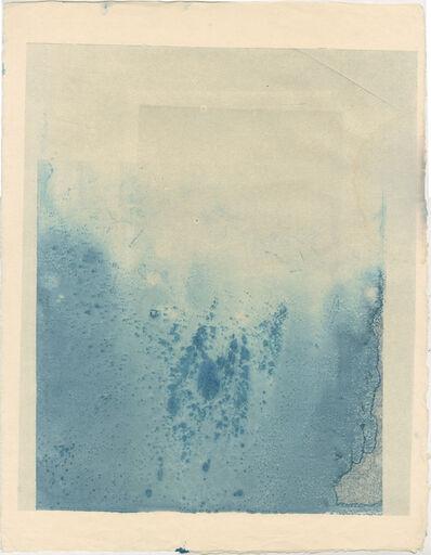 Aurore de La Morinerie, 'Plankton 4', 2015