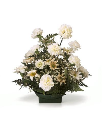 Chuck Ramirez, 'Quarantine: White Carnations', 2000-2011