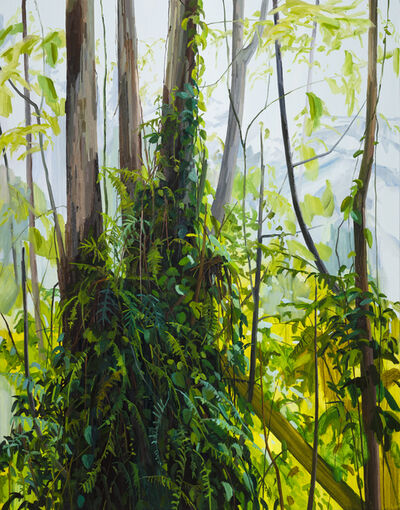 Claire Sherman, 'Trees and Ferns', 2019