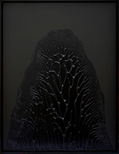 Thomas Tronel-Gauthier, 'Peinture Noire #3', 2014