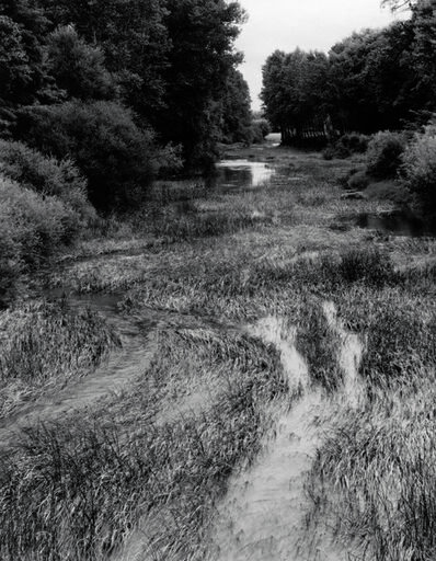 Paul Strand, 'L'Armançon, Cuzy, Yonne, Burgundy, France', 1951