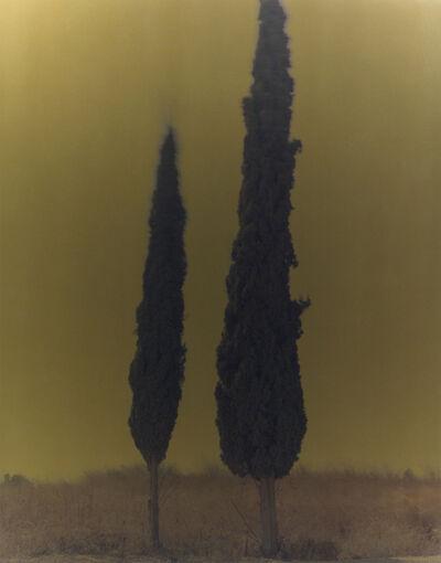 Ori Gersht, 'Mark 1', 2005